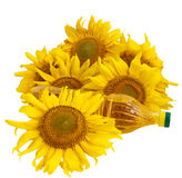 Sunflower oil and sunflower. On white background Royalty Free Stock Image