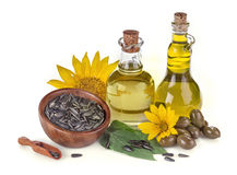 Sunflower and olive oil Stock Images