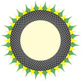 Sunflower ornament frame. Round frame based on floral sunflower pattern with dark ring of seeds and yellow and green petals. Vector ornament for copy space Royalty Free Stock Photography