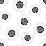 Sunflower Outline Seamless on White Background. Vector Illustration.  stock illustration