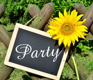 Sunflower panel shield Party Stock Photo