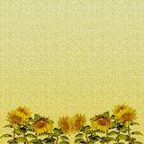 Sunflower Paper Royalty Free Stock Photography