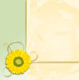 Sunflower Parchment Royalty Free Stock Image