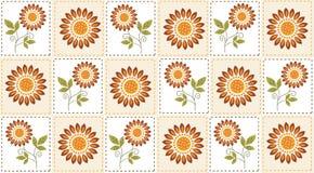 Sunflower pattern. Sunflower vector pattern on the light background Stock Image
