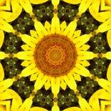 Sunflower pattern background sun flower. graphic color. Sunflower pattern background sun flower floral mandala. graphic color royalty free illustration