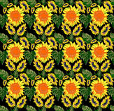 Sunflower pattern on black background Stock Photos
