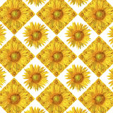 Sunflower pattern Stock Photography
