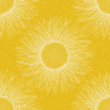 Sunflower pattern Royalty Free Stock Photo