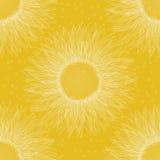 Sunflower pattern Royalty Free Stock Photo