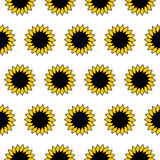 Sunflower. Pattern Royalty Free Stock Image
