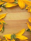 Sunflower petals frame on wooden background Royalty Free Stock Image