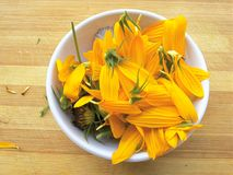Sunflower petals in white bowl. Close up of sunflower petals in white bowl Stock Photo
