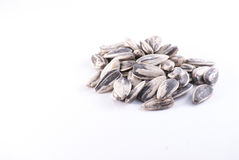 Sunflower pips white background Stock Photography