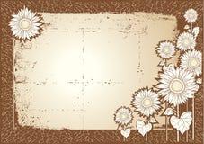 Sunflower postcard Stock Image