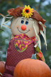 Sunflower Scarecrow with Leaf Bandana. This is a scarecrow with a sunflower hat, leaf bandana, and surrounded by pumpkins at the Lake Lawn Lodge in Delevan, WI Royalty Free Stock Images