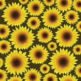Sunflower seamless pattern background - Vector royalty free stock image