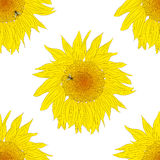 Sunflower seamless pattern. A bee collects nectar from a sunflower Royalty Free Stock Image