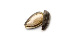 Sunflower seed. Isolated on white Royalty Free Stock Photos