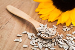 Sunflower Seed. With a wooden spoon Royalty Free Stock Photos