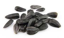 Sunflower seed. Close up on white Stock Photo