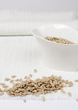 Sunflower seed. Kernels on the white table in jar royalty free stock photo