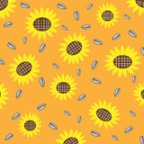 Sunflower and seed background Stock Photo