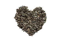 Sunflower seed create  with heart seed. Isolated Stock Images