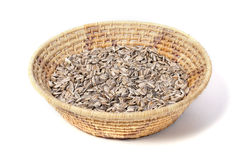Sunflower seed harvest Royalty Free Stock Image