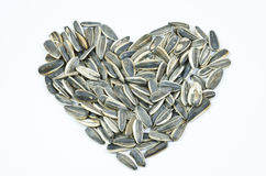 Sunflower seed heart Stock Images