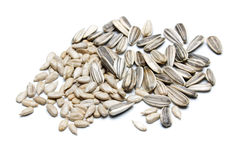 Sunflower seed isolated on white Royalty Free Stock Image