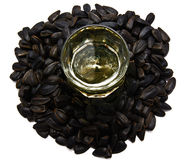 Sunflower seed isolated on white Royalty Free Stock Photos