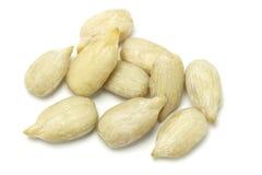Sunflower seed kernels. Isolated on white background Stock Images