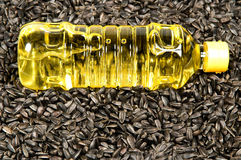 Sunflower-seed oil. Plastic bottle with sunflower-seed oil against sunflower seeds Stock Photo