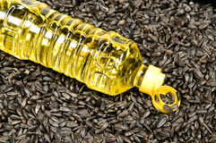 Sunflower-seed oil. Plastic bottle with sunflower-seed oil against sunflower seeds Royalty Free Stock Image