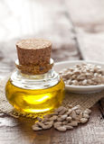 Sunflower seed oil Stock Images