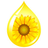 Sunflower-seed oil. Vector sunflower-seed oil drop Royalty Free Stock Photography