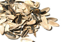 Sunflower seed rind Royalty Free Stock Image