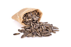 Sunflower seed in sack on white Royalty Free Stock Photography