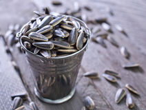 Sunflower seed Stock Photography