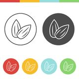Sunflower seed vector icons. Vector set of sunflower seed icons in thin line style Stock Image