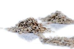 Sunflower seeds. Sunflower seeds on a white background Royalty Free Stock Photos