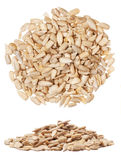 Sunflower seeds Royalty Free Stock Photography