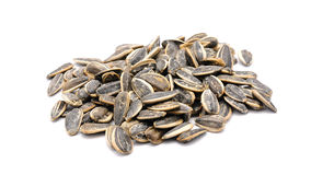 Sunflower seeds. Isolated on a white background Stock Image