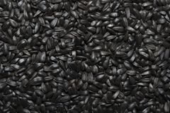 Sunflower seeds Royalty Free Stock Photo