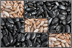 Sunflower seeds. Peeled seeds mixed with untreated seeds macro Stock Photo