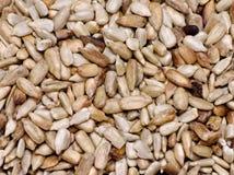 Sunflower seeds. Bunch of sunflower seeds Stock Photos