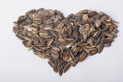 Sunflower seeds Stock Photography