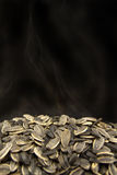 Sunflower Seeds. Freshly cooked sunflower seeds Royalty Free Stock Images