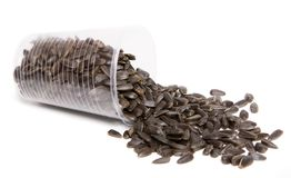 Sunflower seeds. In plastic glass royalty free stock photos
