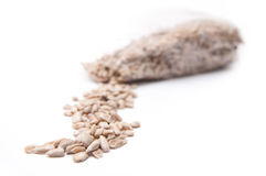 Sunflower seeds bag Stock Photography